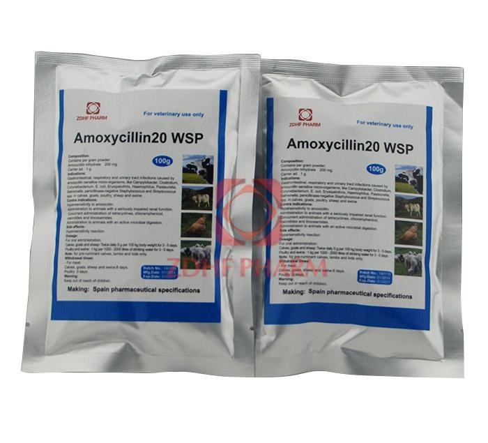 Amoxycillin20 WSP